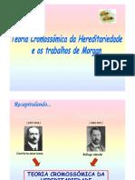 Teoria Cromossómica e os Trabalhos de Morgan