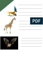 Animals descriptions