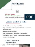 Agriculture Labour