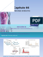 Fisiologia Metabolica Del Pancreas