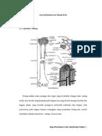 Patofisiologi-Fraktur