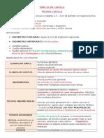 10. c. Polipo Endometrial