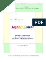Apostila_AlLinear_2010_U1.pdf