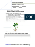 Evaluacion Sumativa Cnaturales 2basico Unidad1 Marzo 2011
