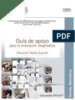 Guia Diagnostica MS Mate