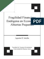Fragilidad Financiera Endogena de Economías Pequeñas Agustin DAttelis
