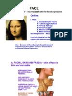 Face Lecturef02f