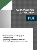 Microorganisma Dan Kesannya