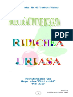 Proiect Vica Insp Finala