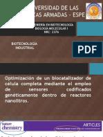 Proyecto Integrador 2_Biotecnología Industrial