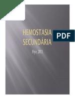 Hemostasia Secundária
