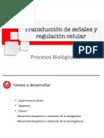 Semana 13 Clase 1 PB2 .pdf