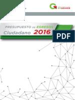 Presupuesto de Egresos Ciudadano 2016 New