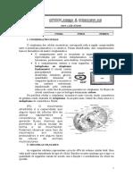 Citoplasma e Organelas Celulares