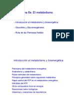 Tema 6a. Metabolismo
