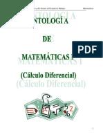 antologia calculo.pdf
