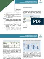 Pulso Macroeconómico - Junio 2016