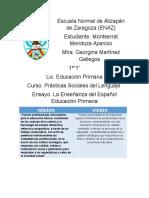 Ensayo de Español de Practicas Sociales Del Lenguaje