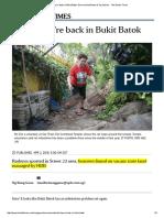 Apr 2016 Rats Are Back in Bukit Batok, Environment - Straits Times