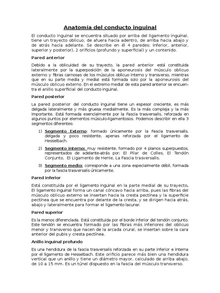 Anatomía Del Conducto Inguinal