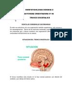 MFH+II+-+AO+05.pdf