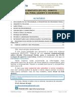 Apostila Resumo Pc Pe Agente Processo Penal Público Externo