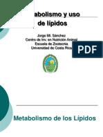 9. Metabolismo Grasas.2014
