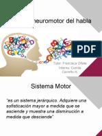 Control Neuromotor Del Habla