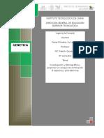 ensayo de eliminacion de especies.docx