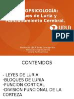 Clase 2 Bloques de Luria y Funcionamiento Cerebral