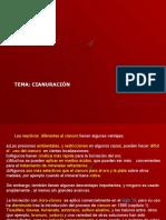 4. Cianuración.ppt.ppt