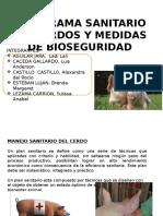 expo-infecciosas-PORCINOS (1).pptx