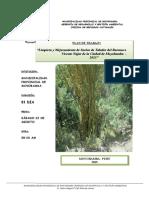 Plan de Reforestación Del Barranco Vicente Najar Ok
