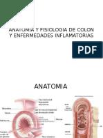 Anatomia y Fisiologia de Colon