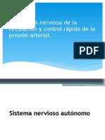 Regulacion Nerviosa Sistema circulatorio