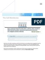 The Cell Membrane _ S-cool, The Revision Website