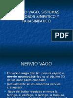 22 Nervio Vago y Ramas, Simpatico y Parasimpatico