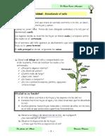 08_actividad_5.pdf