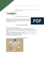 Comandos Basicos de Linux Canaima