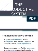 The Reproductive System1