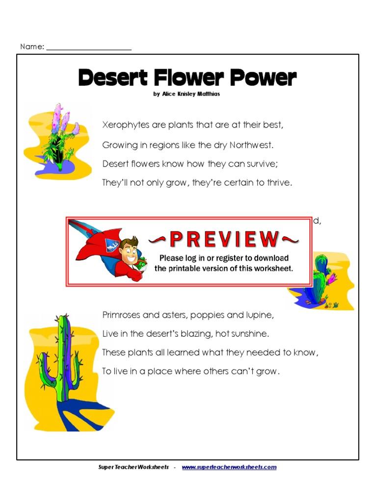 4th Desert Flowers And Its Power Anthropomorphism Desert