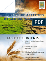 AGRICULTURE-AFFECTED-BY-GLOBAL-WARMING (1).pptx