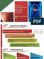 Construcción del cáncer de estómago - páncreas.