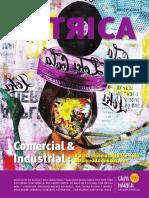 Revista Citrica - Número 04