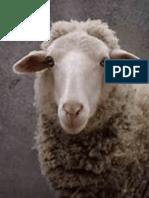 la pecora
