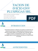 Estacion de Servicio GNV Pluspegas Srl