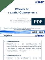 4_IVA_Peq_Contrib_--Junio-2016.pdf