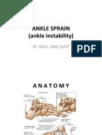 Ankle Sprain Instability