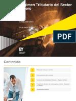 Presentación_Mineria (1)