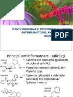 Fitoterapie - Antiinflamatoare